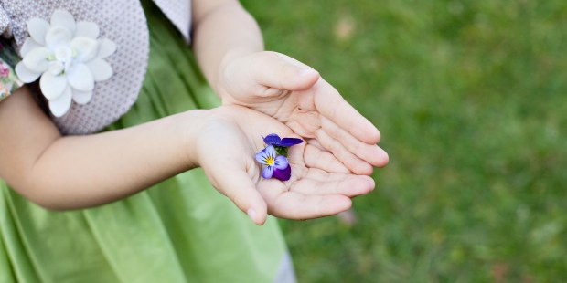 HANDS,FLOWER