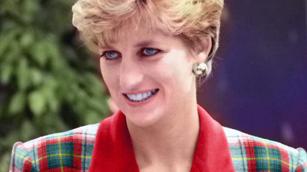 Princesa Diana no Accord Hospice