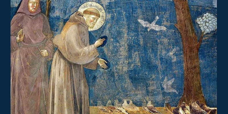 São Francisco de Assis prega aos passarinhos - Giotto
