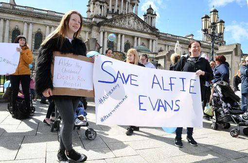 Alfie - Photopress Belfast