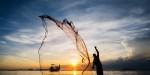 FISHERMAN, WEB, SUNSET