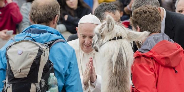 POPE LAMAS