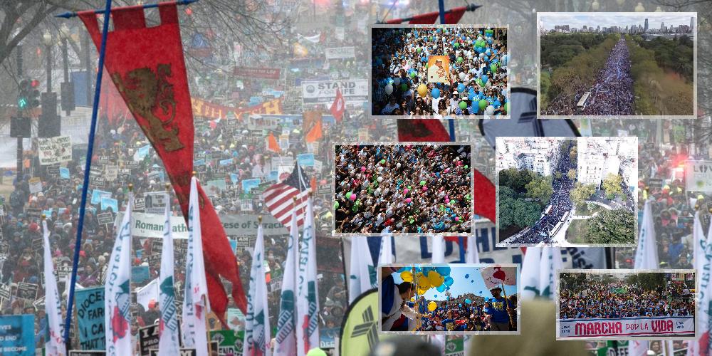 Marcha pela Vida (March for Life)