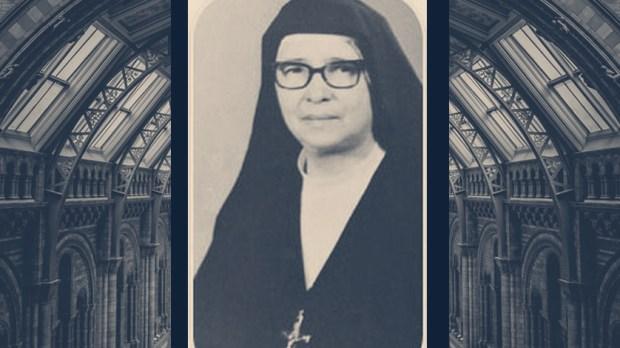 MARIA ROMERO MENESES