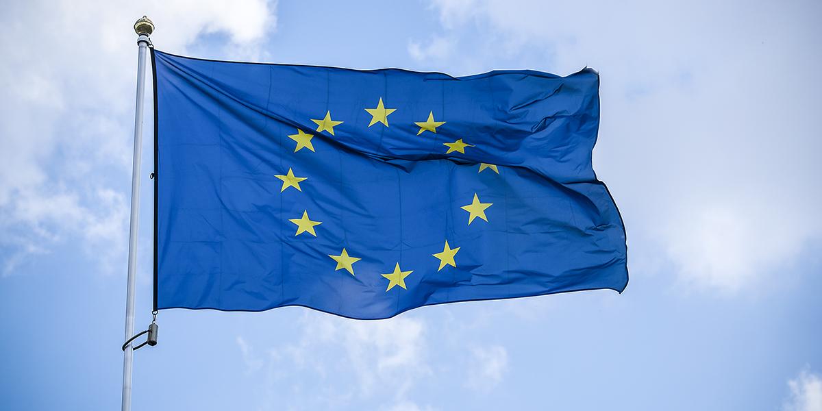 EUROPEAN UNION; FALG
