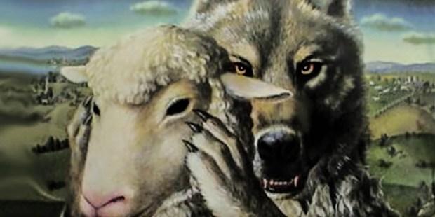WOLF,SHEEP