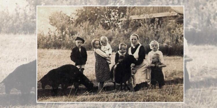 Família Ulma