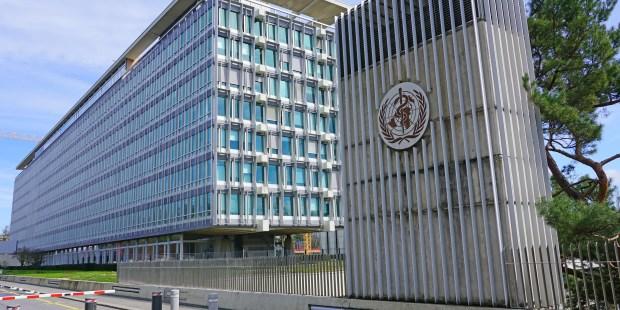 World Health Organization (OMS WHO)