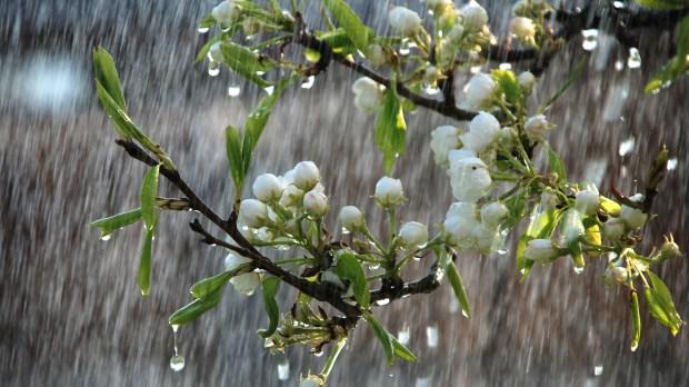 Oração católica para pedir chuva